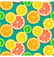 Seamless citrus fruits background vector image