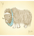 Sketch fancy yak in vintage style vector image