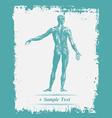 Paper art Human Body vector image