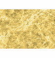 gold marble texture vector image
