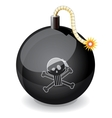 Pirate black glossiness bomb vector image