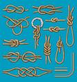 different sea boat knots scheme set vector image