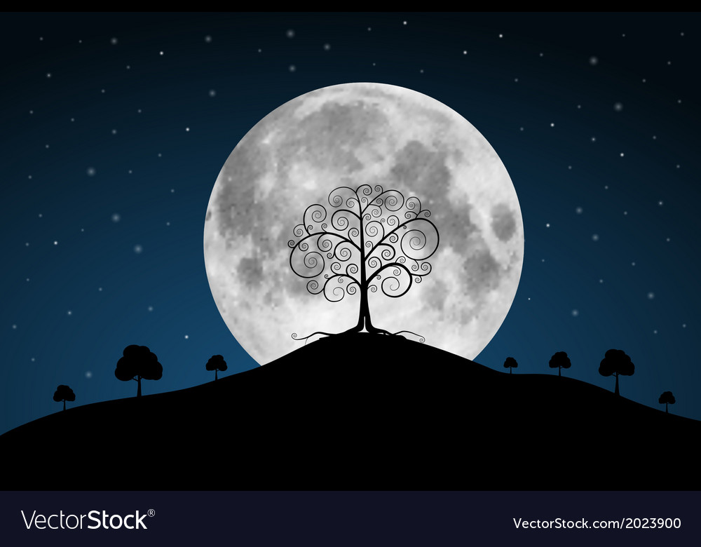 Full moon with stars and trees vector