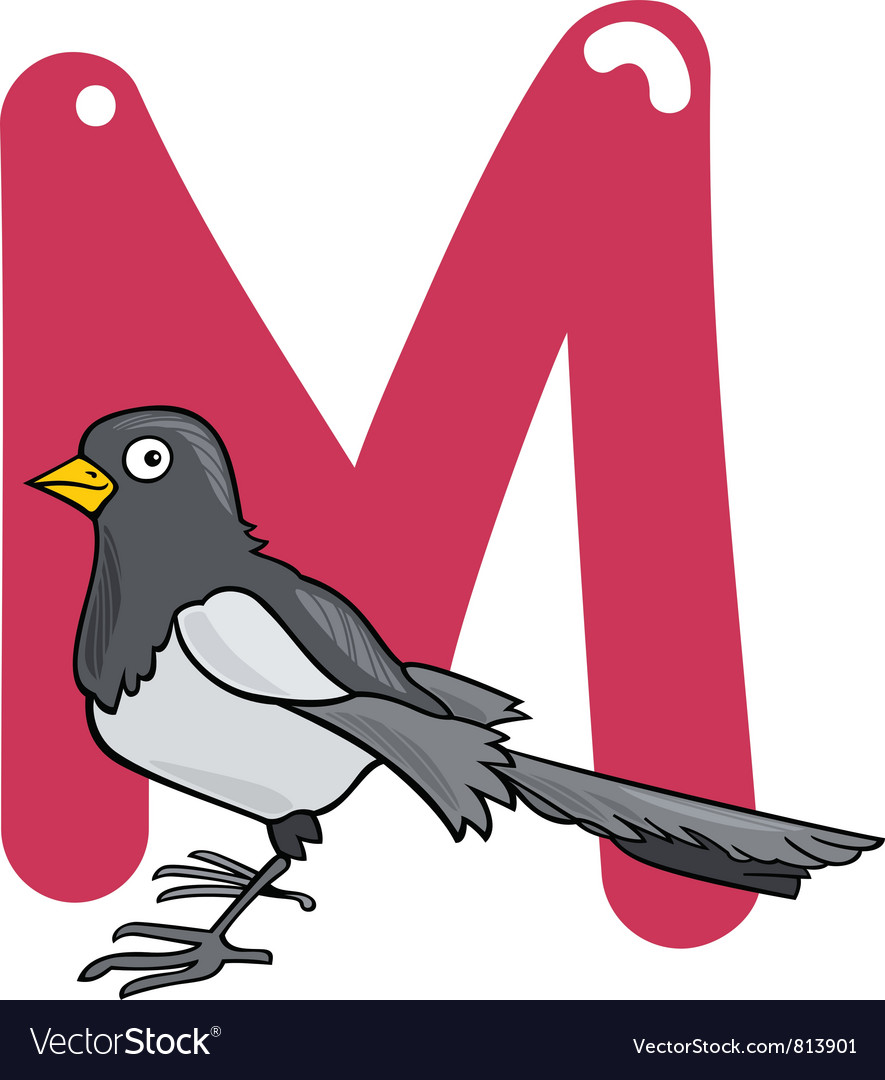 M for magpie vector