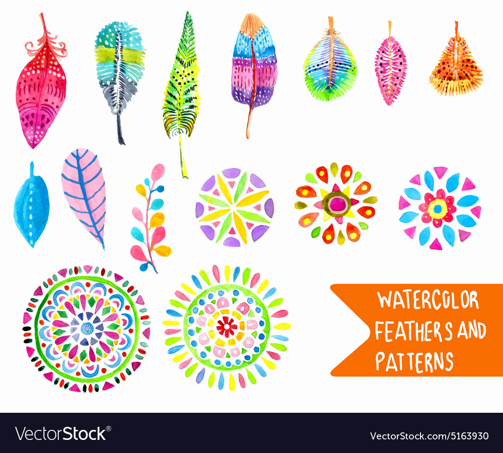 Watercolor feather and pattern collection vector