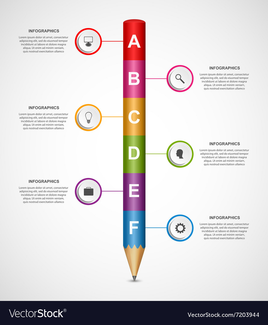 Abstract options infographics design template vector
