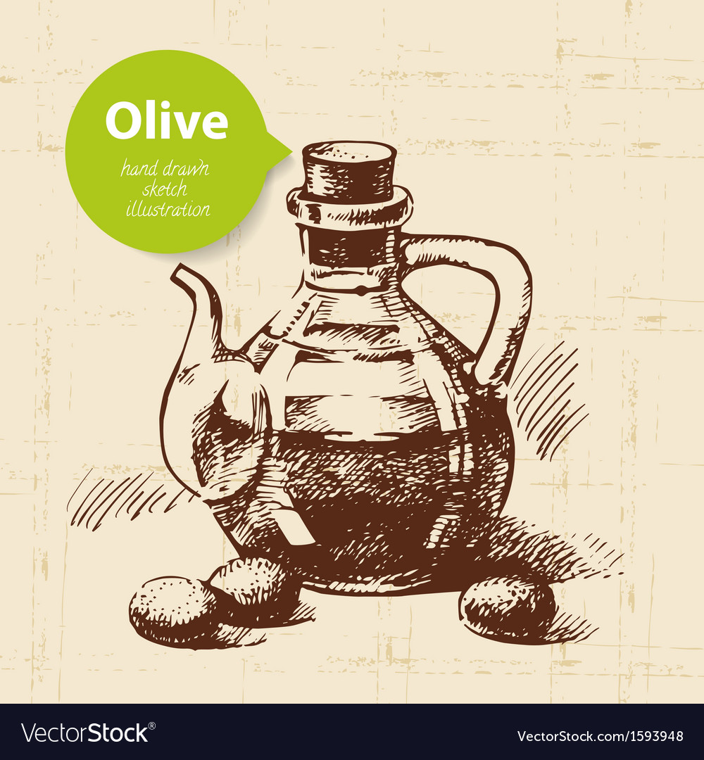 Hand drawn olive vintage background vector