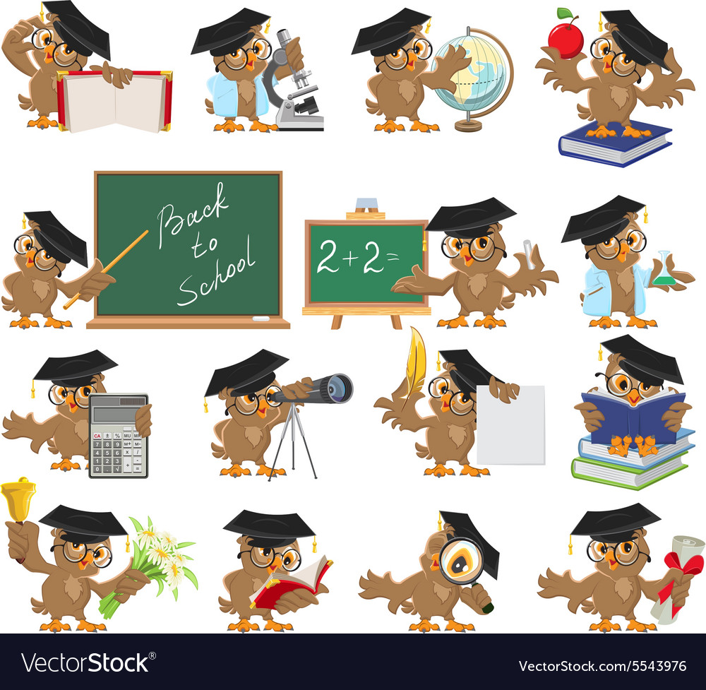 Big set of teacher owl vector