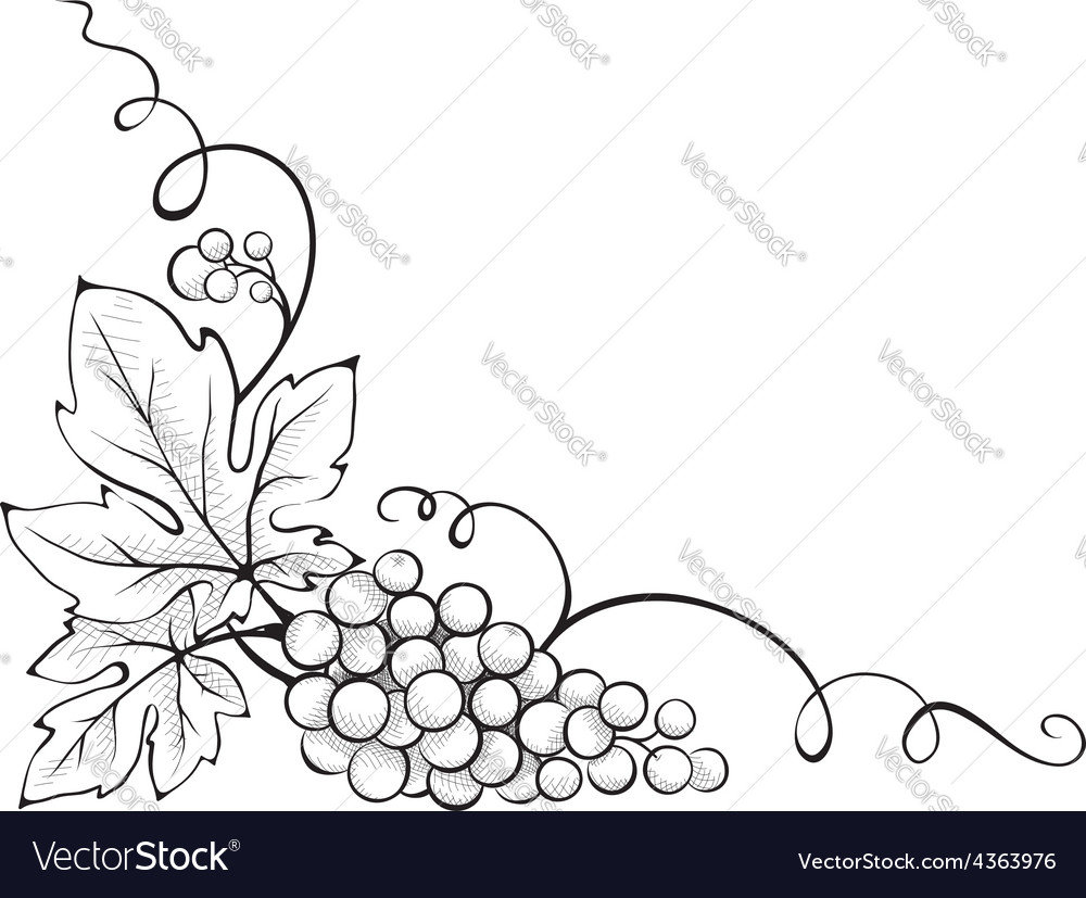 Floral decoration  corner vector