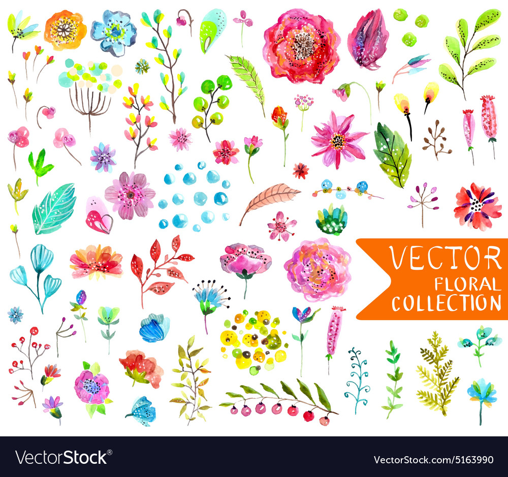 Watercolor flowers collection for different design vector