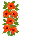 Holiday background with orange beautiful flowers vector image