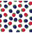 Raspberry and blackberry pattern vector image