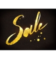 Sale word in gold and black colors vector image