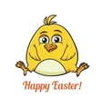 Cute little yellow Easter chick vector image