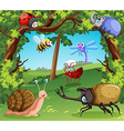 Many types of bugs in the forest vector image
