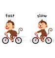 opposite words fast and slow vector image