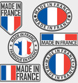 Made in France label set with flag vector image vector image