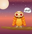 Cute Owl on night sky vector image vector image