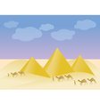 egypt and pyramid landscape vector image