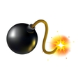 A bomb with a burning wick vector image