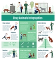 Stray Animals Infographics Set vector image
