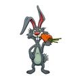 Funny cartoon rabbit eating a carrot vector image