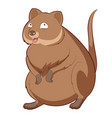 cartoon happy quokka vector image