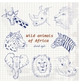 Wild animals of Africa in sketch style on a paper vector image