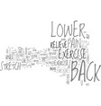 Back exercise lower pain relieve techniques text vector image