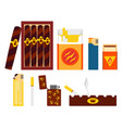 set of cigarettes cigars lighters and ashtray in vector image