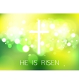 Hi is Risen Happy Easter Green Background with vector image