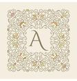 Elegant luxury varicolored floral frame vector image