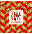 Christmas decor and label with holidays greetings vector image vector image