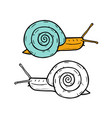 hand drawn snails vector image