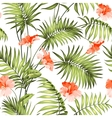 The branch of a palm tree vector image vector image