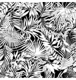 tropical leaves in black and white vector image
