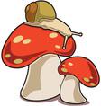 Snail And Mushroom vector image