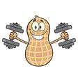 Peanut Cartoon Doing Weights vector image