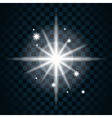 Shine star sparkle icon 14 vector image