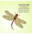 Mosaic stylized dragonfly vector image