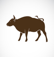 Bull on a white background vector image vector image