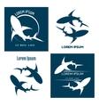 Sharks logo vector image