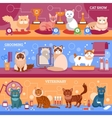 Cats banner set vector image