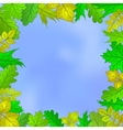 leaves and sky vector image