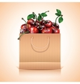 Many cherries in the paper bag vector image
