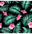 Tropical flowers and jungle vector image