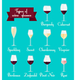 Types of glasses infographic Set vector image