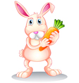 A fat bunny holding a carrot vector image
