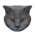 Abstract polygonal cat vector image