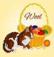 Colors Cat and a basket with balls of wool vector image